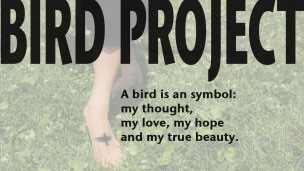 BIRDPROJECT_main_birdis